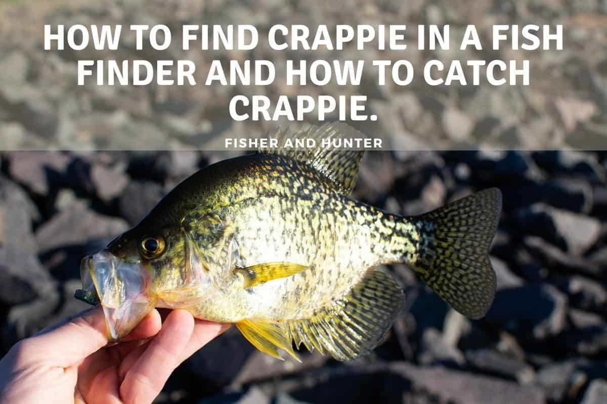 How to Find Crappie in a Fish Finder and How to Catch Crappie.