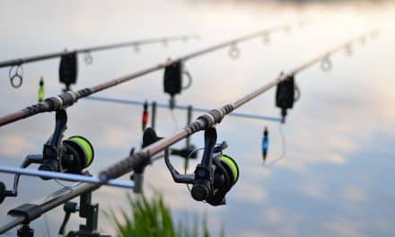 How to Choose Rods and Reels for Carp Fishing