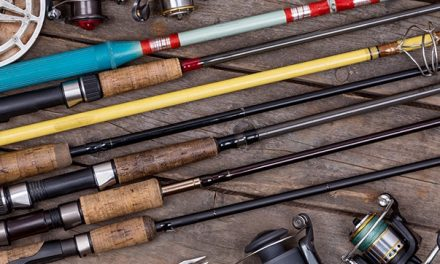 Casting vs. Spinning Rods