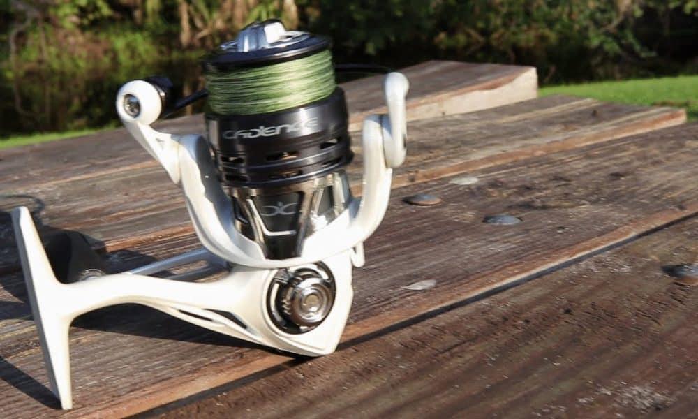 cadence fishing gear