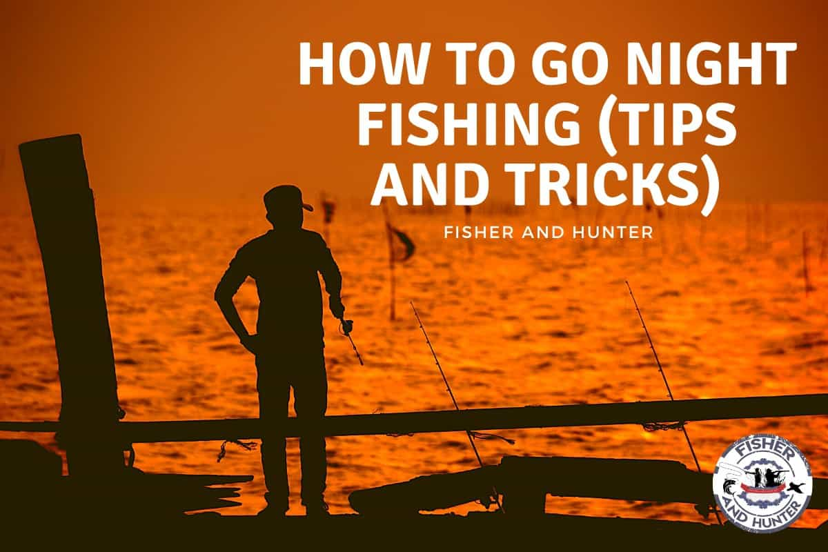 How to go night fishing tips and tricks