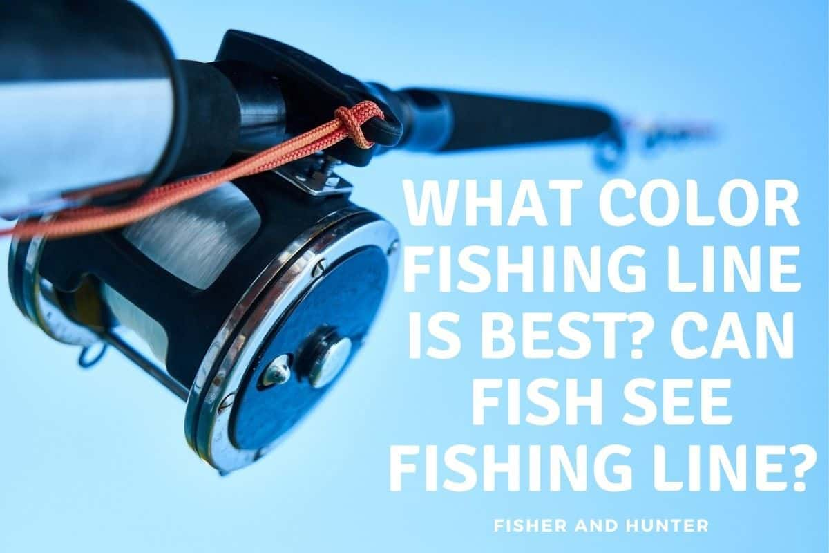 What color fishing line is best