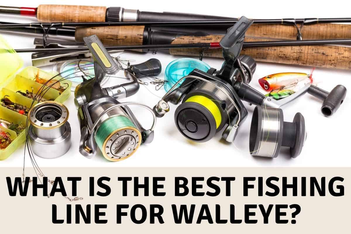 What Is the Best Fishing Line For Walleye