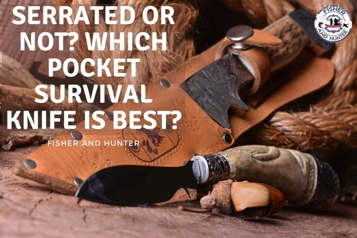 Serrated Or Not? Which Pocket Survival Knife Is Best?