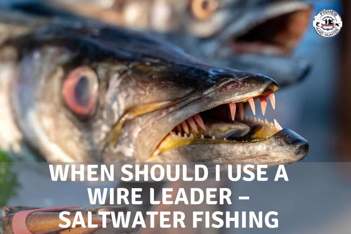 When should you use a wire leader for saltwater fishing