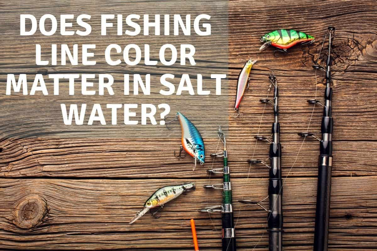 Does Fishing Line Color Matter In Salt Water?